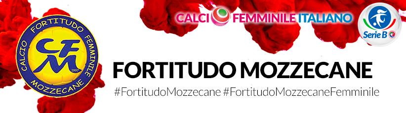 Fortitudo-Mozzecane